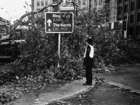 A policeman surveys the damage on a London road caused by the 1987 storm (C) The Telegraph
